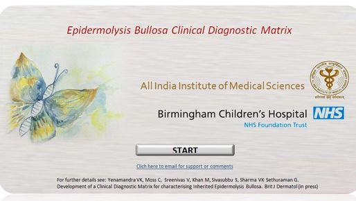 start screen of an online system for the diagnosis of Epidermolysis Bullosa